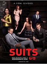 金装律师/诉讼双雄/西装革律第四季在线观看